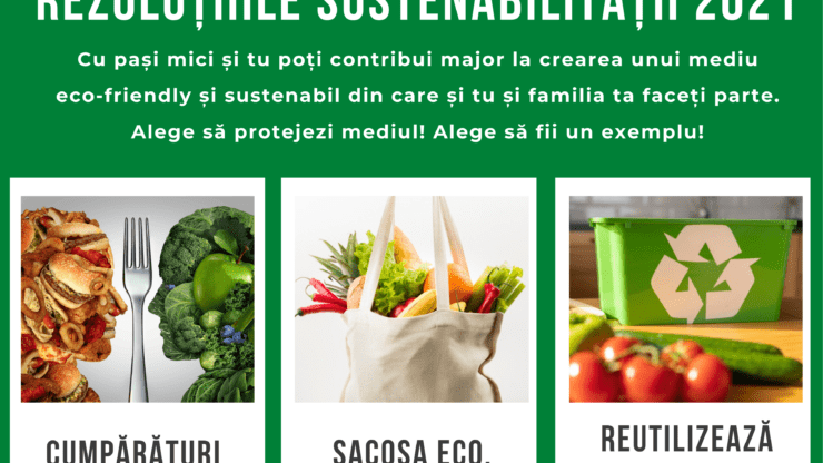 Sustainability Resolutions 2021